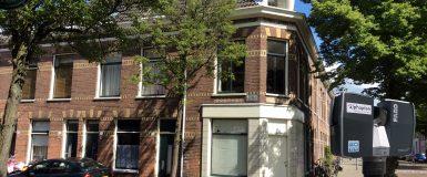 Rozenprieel Haarlem